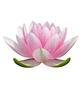 Lotus Gateway - Spiritual Healing Centre Logo