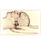 CranioSacral Therapy Logo