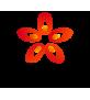 healthywifehappylife Logo