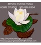 MYSTIC TURTLE YOGA HOME STUDIO Logo