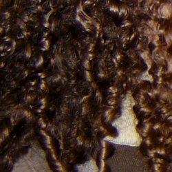Nat - Brunette, 3c, Readers, Curly hair hairstyle picture