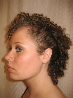 Curly Mohawk - Brunette, 3c, Short hair styles, Updos, Kinky hair, Styles, Special occasion, Female, Curly hair, Teen hair hairstyle picture
