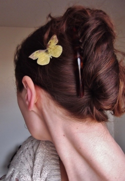 peacock french twist -  hairstyle picture