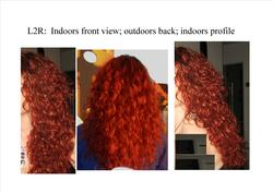 3a L2R: Front of hair (taken indoors); Back (outdoors); Side view (indoors) - Redhead, 3a, Long hair styles, Readers, Female, Curly hair, Adult hair, Layered hairstyles hairstyle picture