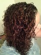 mixed chicks photo 2 - spiral curls
