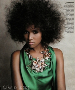 Arlenis Sosa - Celebrities, Medium hair styles, Kinky hair, Afro, Styles, Female, Black hair, Adult hair, Curly kinky hair, Natural Hair Celebration hairstyle picture