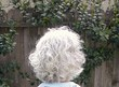 silver curly - Gray hair