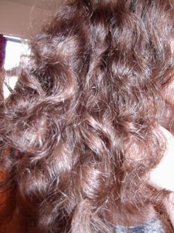 untamed curls -  hairstyle picture