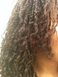 side view of mos mini twists - Curly kinky hair, 3c