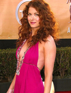 Debra Messing - Redhead, 3a, Celebrities, Long hair styles, Female, Curly hair, Adult hair, Formal hairstyles hairstyle picture