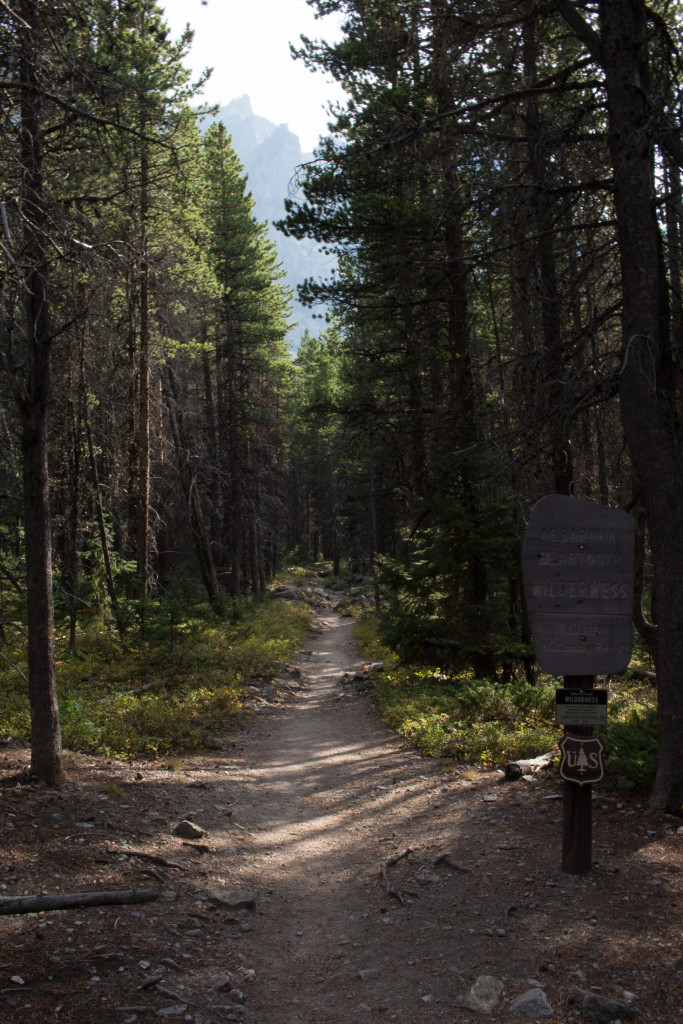 Entering the Absaroka-Beartooth Wilderness.