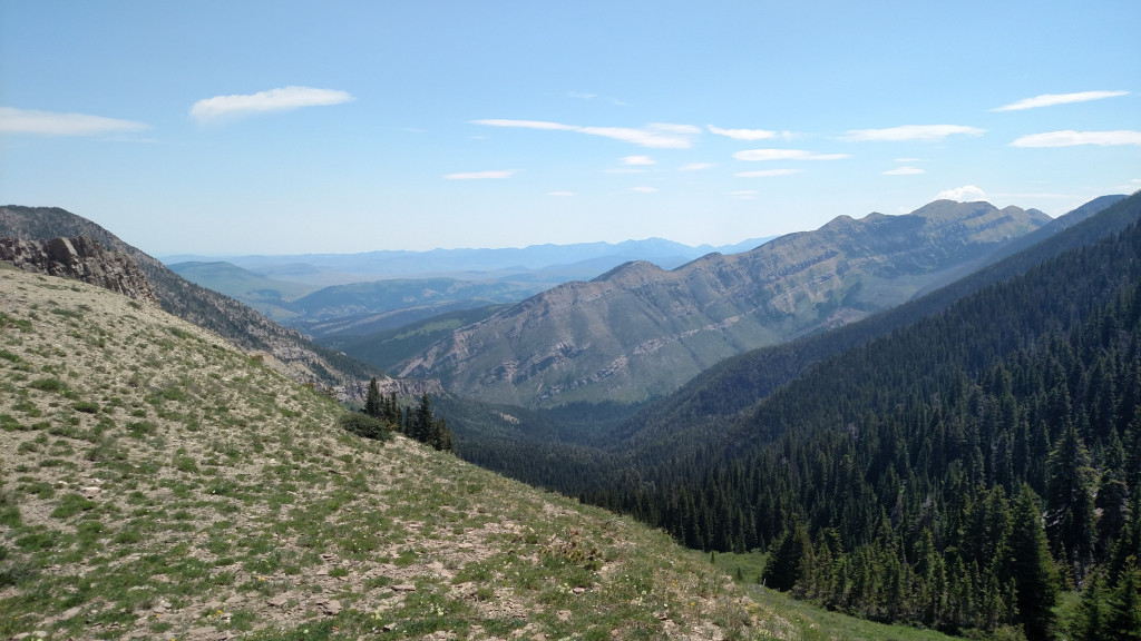 Looking east towards East Baldy Basin from the saddle.