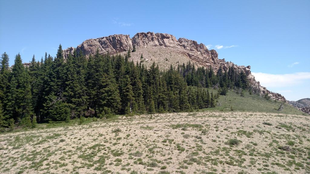 Looking north towards the razorback ridge from the saddle.