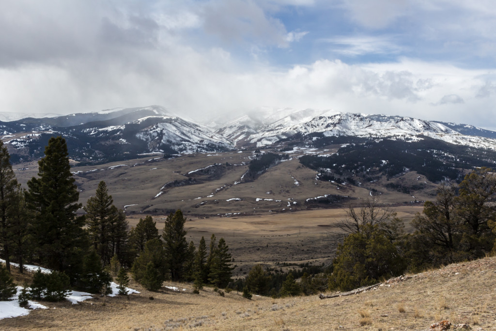 West Pine after the storm passed. Chimney Rock to the right (barely visible).