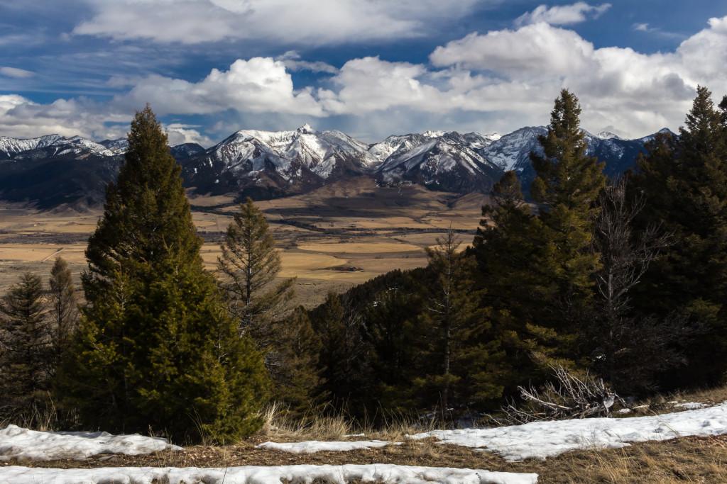A classic Montana vista.