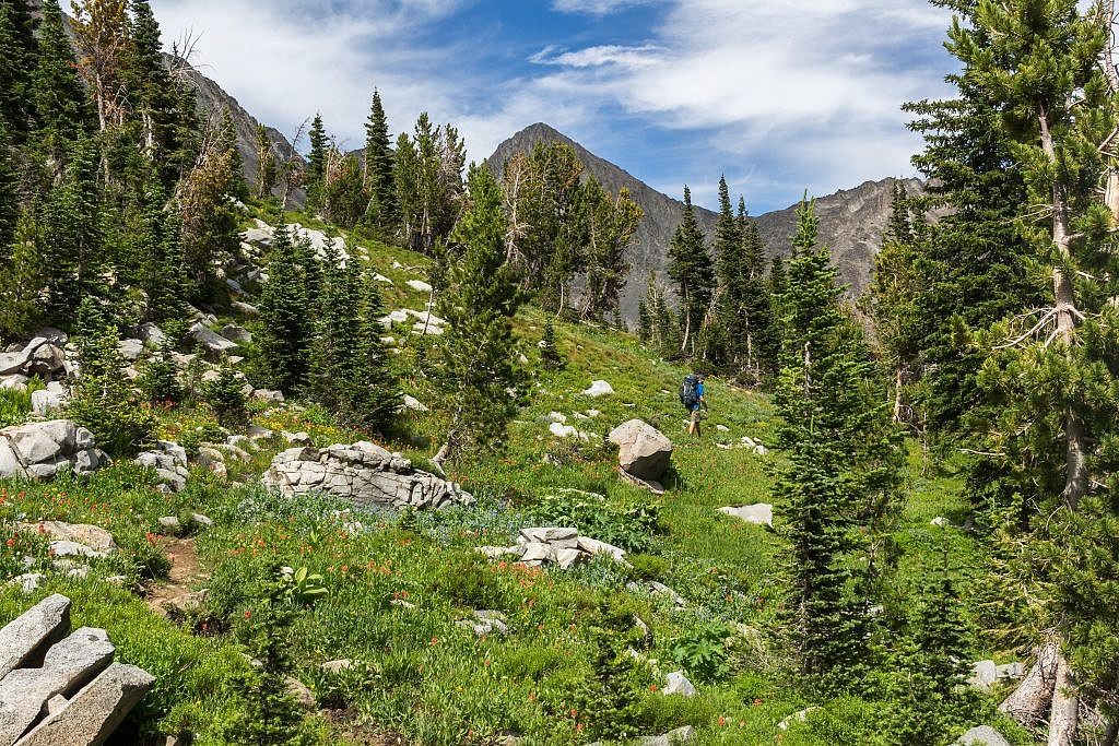 """Finally back on the trail. A cool unnamed peak in the background. Call it """"Unnamed Peak""""?"""