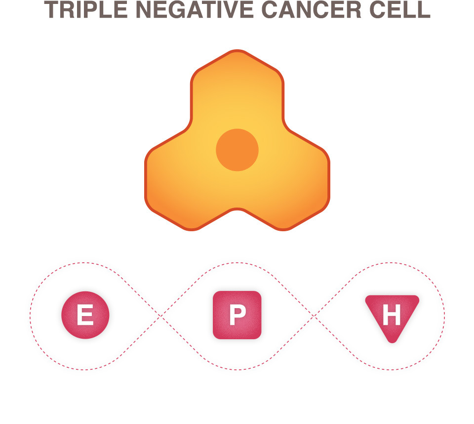 breast cancer triple negative cell