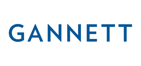 gannett video enterprises