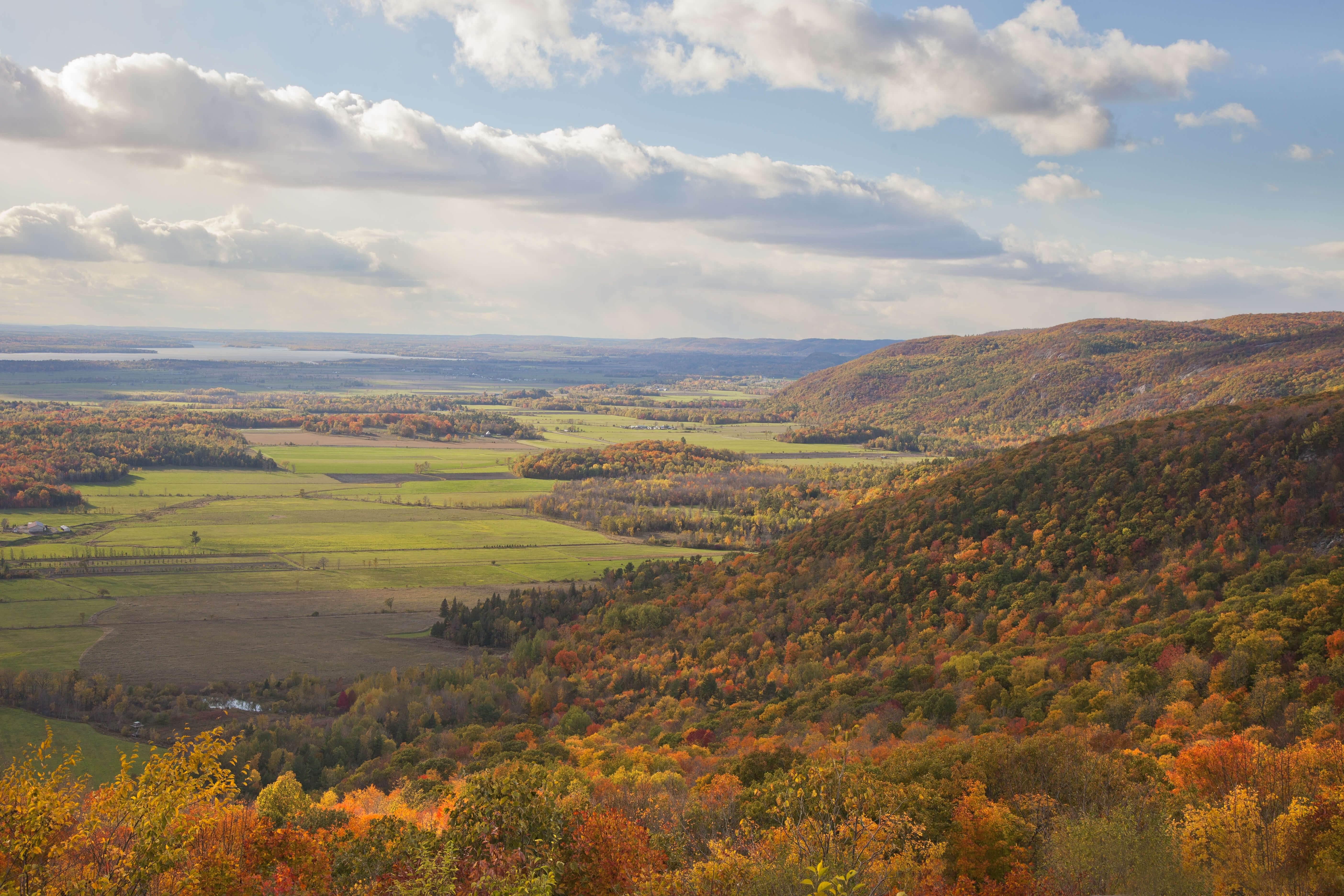 eardley escarpment
