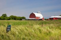 Farming in the Greenbelt