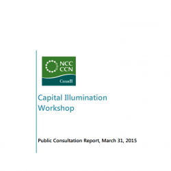 Capital Illumination - Public Consultation Report - March 31, 2015