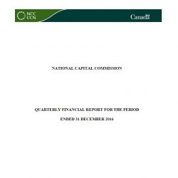 Quarterly Financial Report for the Period Ended 31 December 2016