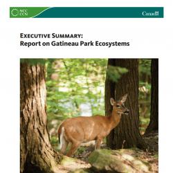 Executive Summary: Report on Gatineau Park Ecosystems