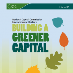 Environmental Strategy - Building a Greener Capital