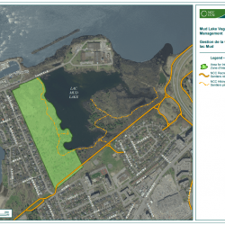 Vegetation management at Mud Lake - Map