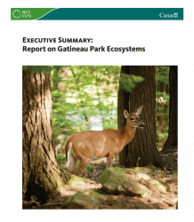 Executive Summary: Report on Gatineau Park Ecosystems