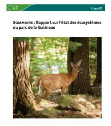 Sommaire : Rapport sur l'état des écosystèmes du parc de la Gatineau