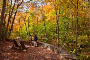 Le Coloris automnal de la CCN commence ce weekend - Découvrez les couleurs d'automne autrement!