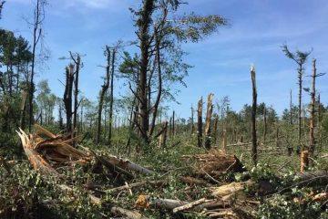 Une partie du secteur de la sablière Bruce reste fermée à la suite de la tornade du 21 septembre