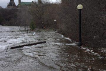 La hausse récente du niveau des eaux a entrainé des inondations sur les sentiers