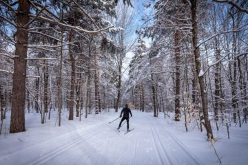Winter activities in Gatineau Park