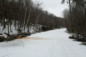 Gatineau Park Partially Reopens