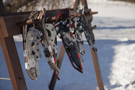 Introduction to Snowshoeing
