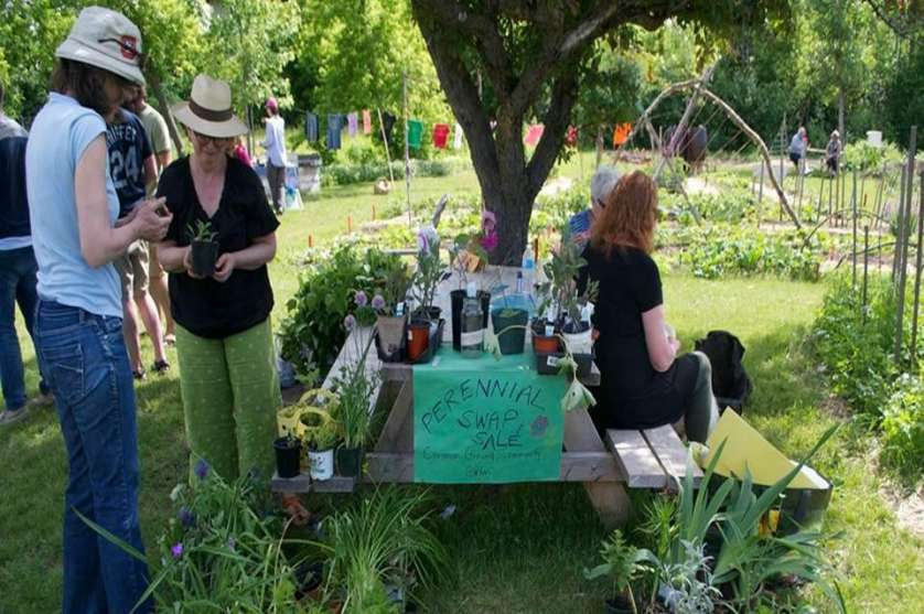 Ottawa Community Garden