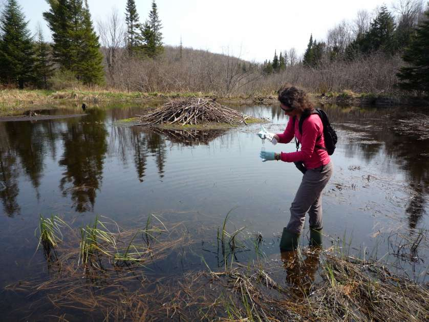 Public Science at the NCC Gatineau Park, the Greenbelt, and urban lands and parks