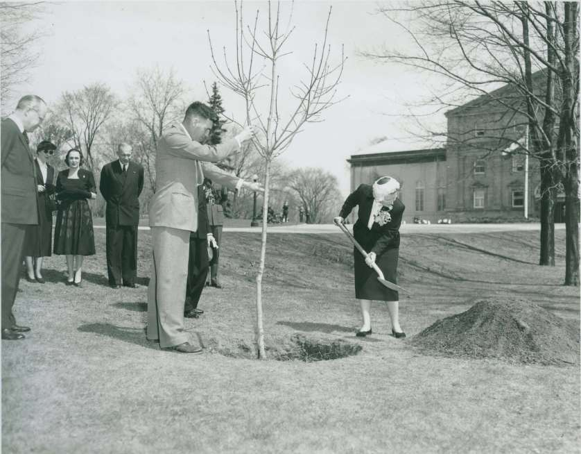 Queen Juliana plants a tree at Rideaul Hall