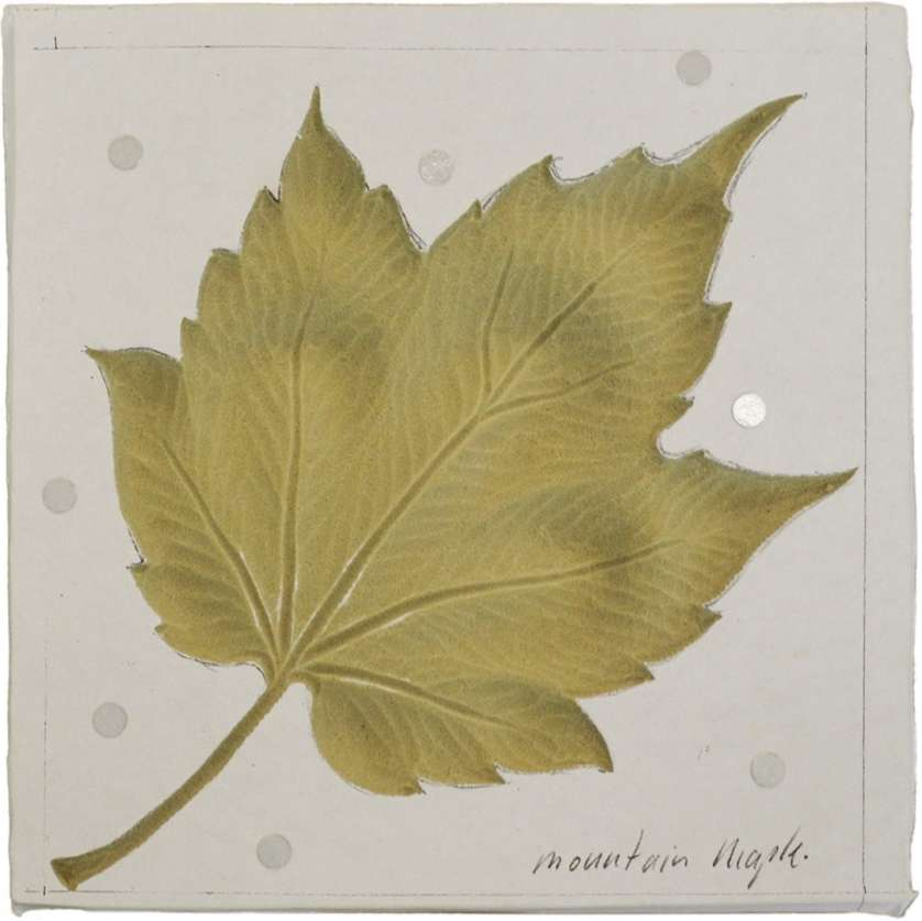Maple-leaf carving