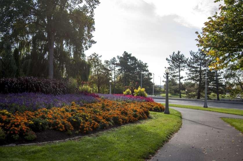Queen Elizabeth Driveway