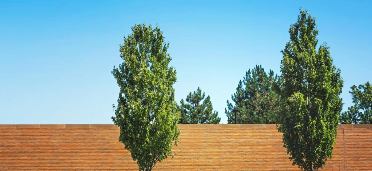 Trees2Equal