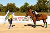 Ice hockey on horses? Find out at Sunday Polo in the Park