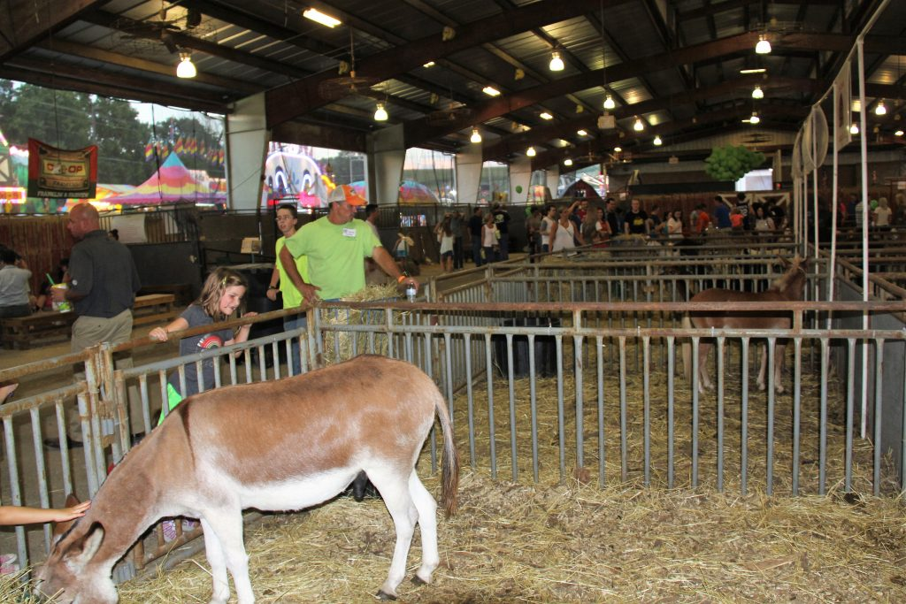 Williamson County Fair Ends Saturday Franklin Home Page