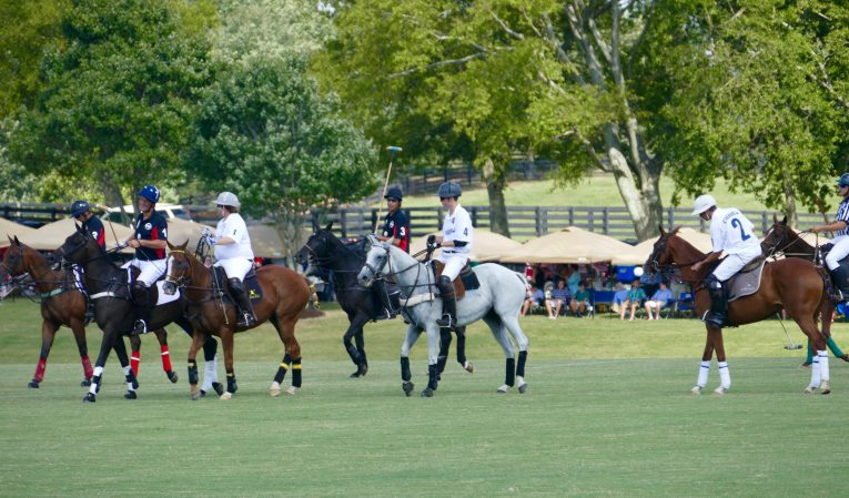 Chukkers for Charity