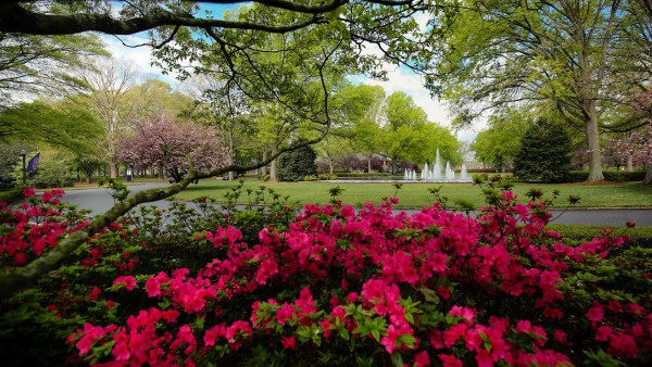 Furman beautiful campus (size: funews-syndication)