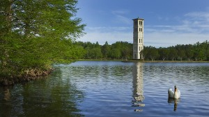 Bell Tower with swan in foreground, 600 pixels wide