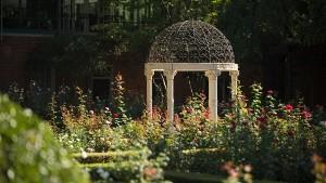 rose-garden-600-wide