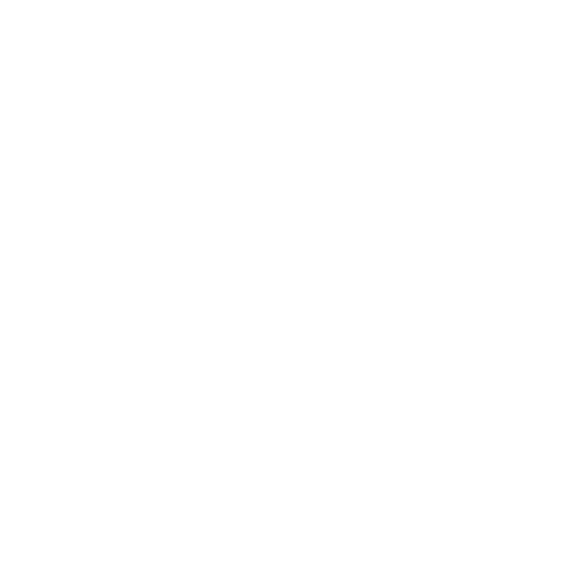 The Conscience Keeper